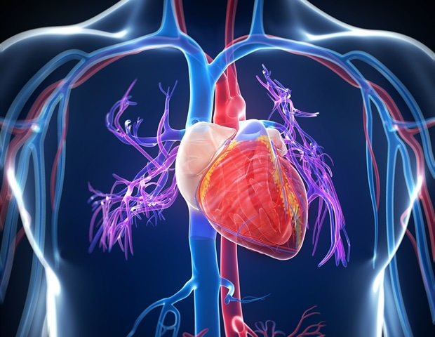 Temple, Case Western scientists receive $3 million NIH grant to study pathway behind heart failure