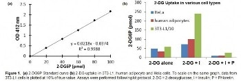 Colorimetric Assay Kit for Glucose Uptake
