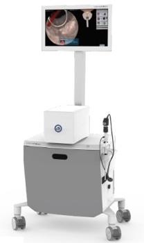 A Virtual Reality Training Simulator for Urology