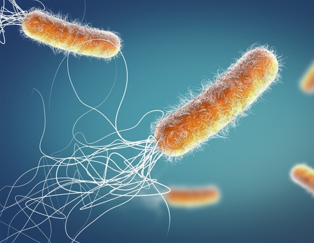 What is the Global Preclinical Antibacterial Pipeline?