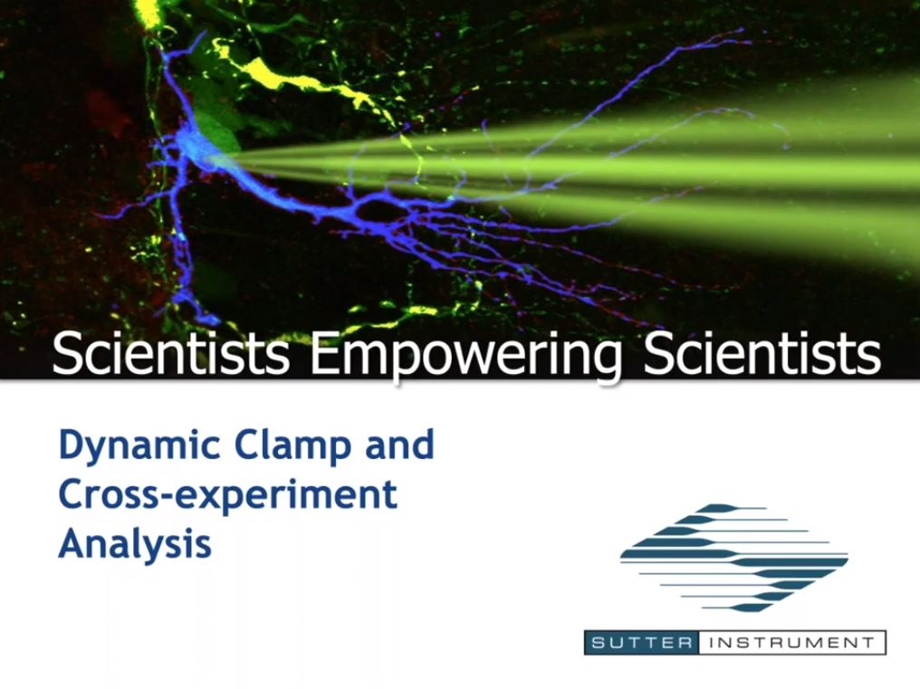 Dynamic Clamp and Cross-Experiment Analysis - Scientists Empowering Scientists