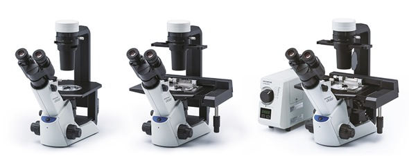 New Olympus CKX53 Family for Brightfield, IPC and Fluorescence