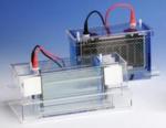 TWC-202-20 Dual Double-Wide Mini-Vertical Electrophoresis System