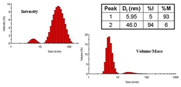 Comparison of DLS derived intensity and mass distributions for ovalbumin in PBS at 79°C.
