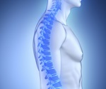 Oxytocin can aid in the control and prevention of osteoporosis