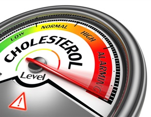 Study shows how two proteins provide a tunnel for bad cholesterol to enter the cells