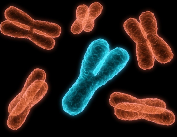 Full assembly of human chromosome 8 reveals new genes, disease risks