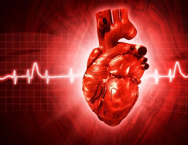 Coronary Artery Disease 620x480