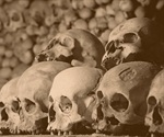 Plague endemic in man since early Bronze Age, but has not always been flea-borne