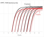 Probe based qPCR assay complete solution