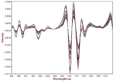 Second derivative math pre-treatment of calibration spectra showing analytical range.