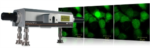 Photostimulation Solutions from Andor Technology