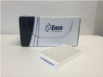 GFP-Certified® FluoForte® Calcium Assay Kit from Enzo Life Sciences