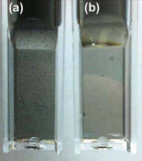 Images of SWCNT. Optical images of single-walled carbon nanotube (a) without centrifugation and (b) with ultracentrifugation for two minutes at 55,000 RPM (~131,000 x g). Note the presence of black, aggregated SWCNT in the sample that was not ultracentrifuged.