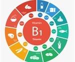 Good Sources of Vitamin B
