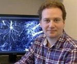 LaVison BioTec highlights Nicolas Renier's research on use of UltraMicroscope to study axon rewiring in nervous systems