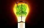 Creating fuel from photosynthesis