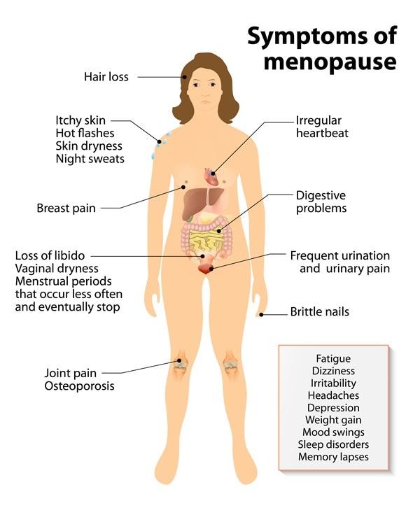 Menopause. Sign and Symptoms - Image Copyright: Designua / Shutterstock