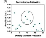 Purification and Characterization of Exosomes Using Density Gradient Ultracentrifugation and Dynamic Light Scattering