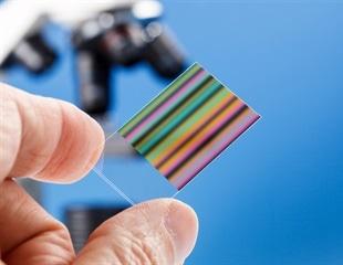 发现,可视化和识别生物标记