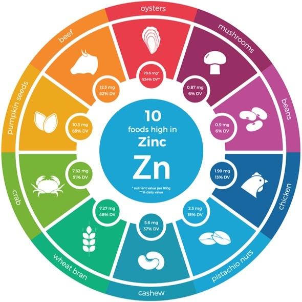 Zinc Rich Foods
