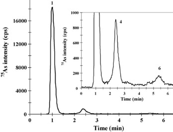 IC-ICP/MS profile of enzymatic extracts of (left) BCR-627 and (right) DOLT-3 obtained by MAEE. Peak identification of the right-hand chromatogram: (1) AsBet, (4) DMA, and (6) As(V). Column: Metrosep Anion Dual 3 - 100/4.0, Metrosep Anion Dual 3 guard; eluent A: 5 mmol/L NH4NO3; eluent B: 50 mmol/L NH4NO3, 2% (v/v) methanol (pH 8.7); flow rate: 1 mL/min; m/z 75, 77, 82.