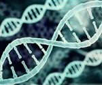 Gene circuit can be used to switch on inside cancer cells and stimulate immune attack, study suggests