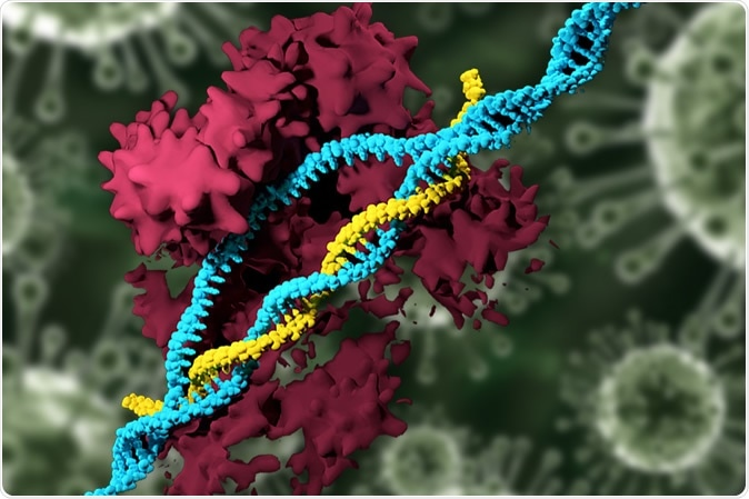 Em um estudo novo, os pesquisadores do MIT desenvolveram os nanoparticles que podem entregar o sistema deedição de CRISPR e especificamente alterar genes, eliminando a necessidade de usar vírus para a entrega. Crédito de imagem: MIT