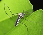 Mosquito control using special bacteria infected mosquitoes approved by the EPA