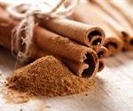 Fat-busting ingredients in cinnamon
