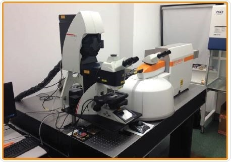 Combined Raman and confocal laser scanning microscope.