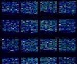 How Do Microarrays Work?