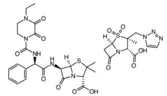 Piperacillin & Tazobactam. Most active antibiotic against Klebisella bacteria in pneumonia, Urinary tract infections (UTIs), meningitis, blood diseases etc.