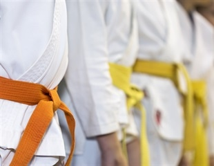 Women who compete in martial arts and combat sports challenge gender norms