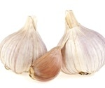 Garlic compound can combat robust bacteria in patients with chronic infections
