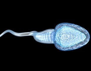 Automated machine learning predicts male infertility based on Johnsen score