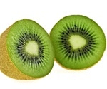 New review examines the latest data on kiwi genetics for wildlife conservation