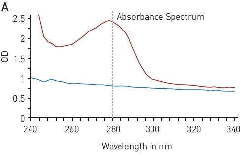 Total protein quantitation by absorbance at 280 nm (A280) A) absorbance spectrum of water (blue) and BSA (2 mg/ml in ddH2O, red) B) Protein standard curve of BSA.