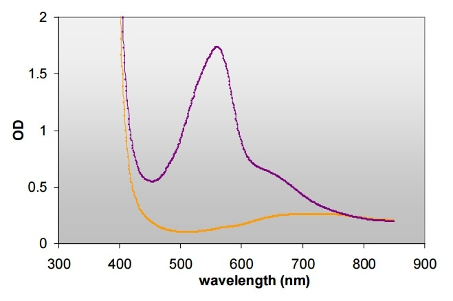 Absorbance scan (300-900 nm) of BCA with (▬) and without (▬) BSA on Infinite M200 reader.