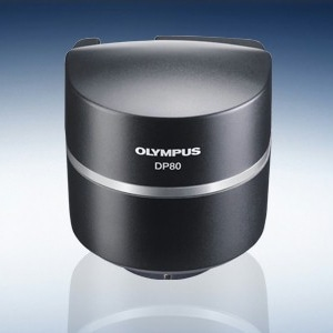 DP80 Dual CCD Color and Monochrome Camera from Olympus Life Science Solutions