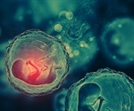 Artificial womb could improve survival among premature babies