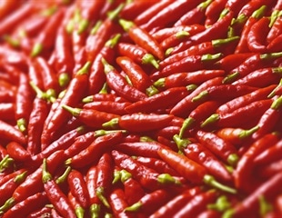 Researchers develop portable device to quantify capsaicin content in chili  peppers