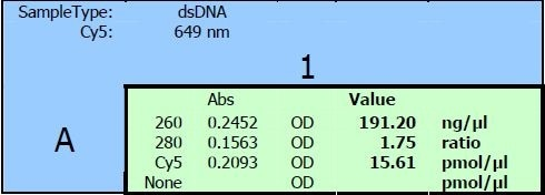 Excel sheet output of the measuring results for position A1. The raw data for 260 nm, 280 nm and Cy5 absorbance are shown in the left columns. Calculations to get the values for nucleic acid con-centration, purity check and dye concentration are shown in the right columns.