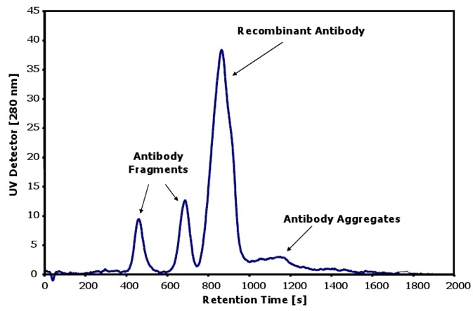 Characterization of antibodies with aggregates and fragments.