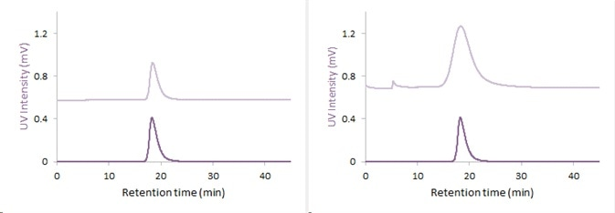UV-Fractorgam: UV-Fractogram after separation of the 15nm (left) and 40nm (right) gold nanoparticles with AF2000 (blue: 530nm, red: 280nm)