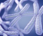 Researchers uncover genes that play a key role in the inactivation of X chromosomes