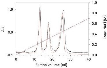 Separation of a ternary protein mixture with Eshmuno® CEX prototype resin in a 30 x 5 mm ID OPUS RoboColumn on a Freedom EVO® (black lines) and 30 x 5 mm ID Superformance column on an ÄKTA system (red lines). UV absorbance at 280 nm and the salt gradient are shown. With similar miniature column formats, the same separation performance and chromatographic results were obtained.