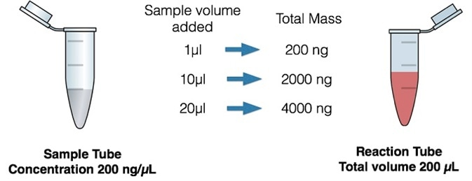 Effect of sample volume on total mass of DNA in an assay.