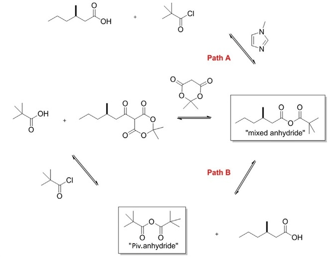Proposed reaction mechanism, showing the mixed anhydride intermediate in pathway A and the pivalic anhydride, explained by mechanistic pathway B.