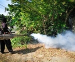 Zika prevention